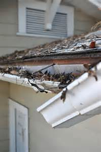 clean house gutters